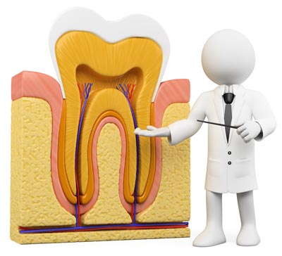 3d white person with a schematic tooth section. 3d image. Isolated white background.
